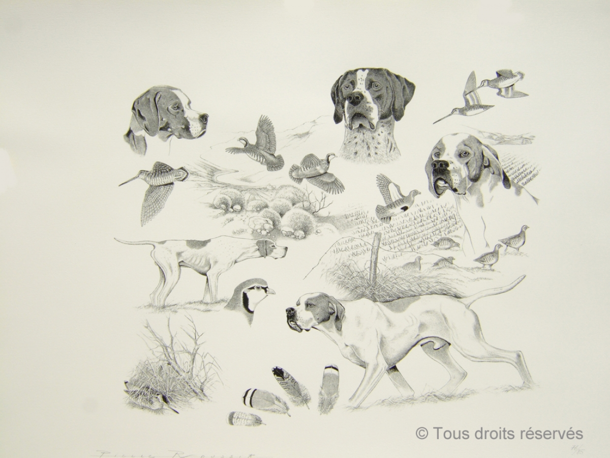 Pointer : Lithographies Chiens